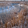 SBP 044<br /> <br /> Early morning light on frozen Spring Brook Creek at Springbrook Prairie Nature Preserve, DuPage County, Illinois.