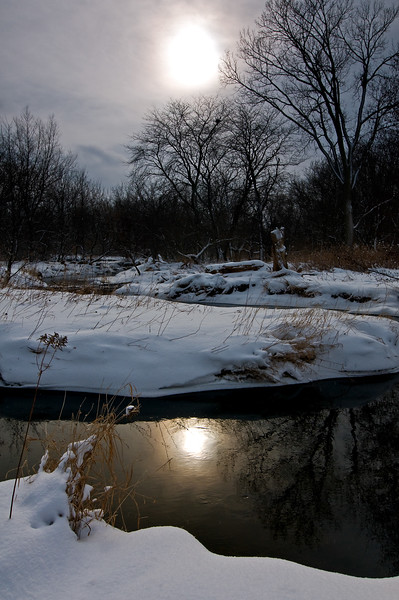 SBP 068<br /> <br /> A pale winter sun shines down on Spring Brook Creek.  Springbrook Prairie Nature Preserve, DuPage County, Illinois.