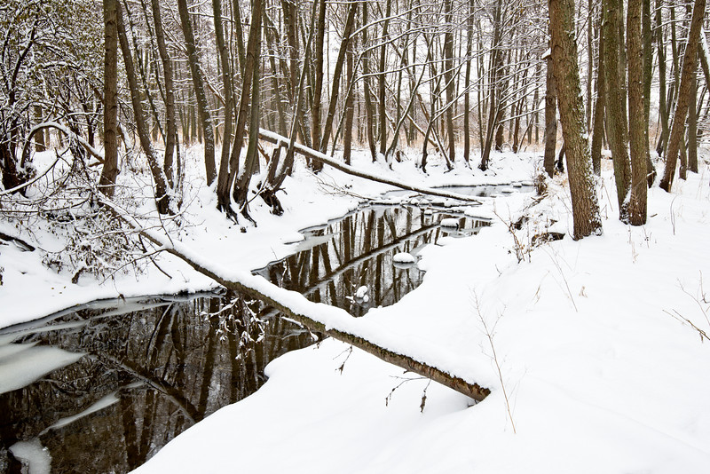 SBP 083<br /> <br /> Spring Brook Creeks flows peacefully through a winter landscape at Springbrook Prairie Nature Preserve, DuPage County, Illinois.