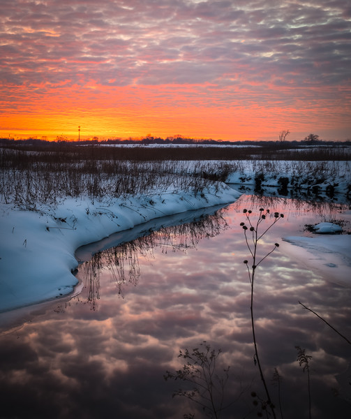 SBP 230<br /> <br /> Vivid colors of a winter sunset reflected in the surface of Spring Brook.  Springbrook Prairie Nature Preserve, DuPage County, Illinois.