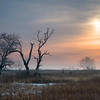 SBP 089<br /> <br /> A winter sunrise at Springbrook Prairie Nature Preserve, DuPage County, Illinois.