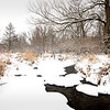 SBP 086<br /> <br /> Spring Brook Creeks flows peacefully through a winter landscape at Springbrook Prairie Nature Preserve, DuPage County, Illinois.