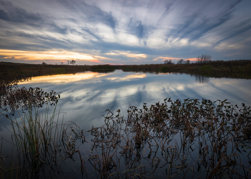 SBP 116<br /> <br /> Twilight reflections on Crooked Slough, Springbrook Prairie Nature Preserve, DuPage County, Illinois.