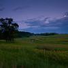 SBP 058<br /> <br /> Native wildflowers at dusk.  Springbrook Prairie Nature Preserve, DuPage County, Illinois.