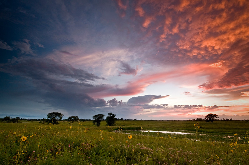 SBP 154<br /> <br /> A clearing storm creates a dramatic sky at sunset.  Springbrook Prairie Nature Preserve, DuPage County, Illinois.