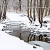SBP 087<br /> <br /> Spring Brook Creeks flows peacefully through a winter landscape at Springbrook Prairie Nature Preserve, DuPage County, Illinois.