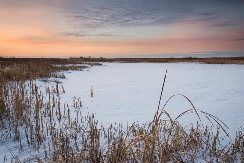 SBP 165<br /> <br /> Subtle sunset colors over a winter landscape at Springbrook Prairie Nature Preserve, DuPage County, Illinois.