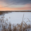 SBP 165<br /> <br /> Subtle sunset colors over a winter landscape at Springbrook Prairie Nature Preserve, DuPage County, Illinois.