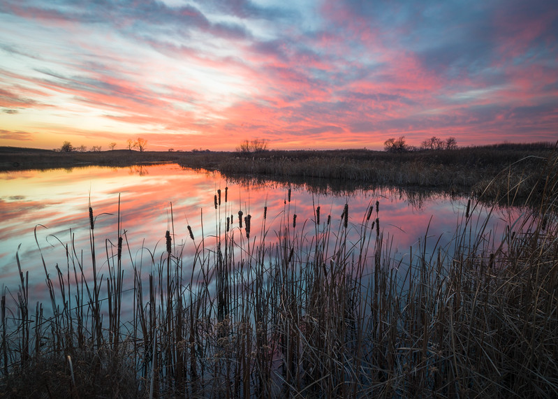 SBP 203<br /> <br /> A dramatic sunset sky reflected in the surface of Crooked Slough at Springbrook Prairie Nature Preserve, DuPage County, Illinois.