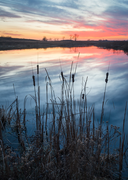 SBP 204<br /> <br /> A dramatic sunset sky reflected in the surface of Crooked Slough at Springbrook Prairie Nature Preserve, DuPage County, Illinois.