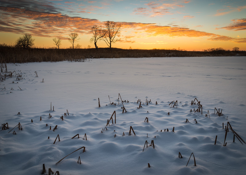 SBP 210<br /> <br /> A colorful end to a winter day at Springbrook Prairie Nature Preserve, DuPage County, Illinois.