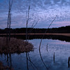 WFG 042<br /> <br /> Dusk at 91st Street Marsh.  Waterfall Glen Forest Preserve, DuPage County, Illinois.