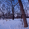 WFG 034<br /> <br /> Deer tracks in the snow.  Waterfall Glen Forest Preserve, DuPage County, Illinois.