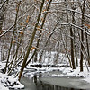 WFG 001<br /> <br /> Sawmill Creek on a cold winter day.  Waterfall Glen Forest Preserve, DuPage County, Illinois.