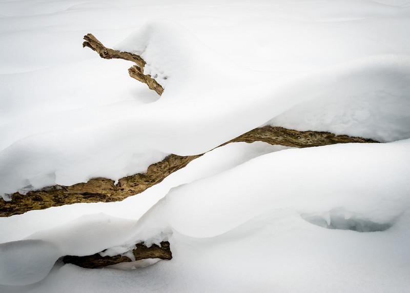 WFG 074<br /> <br /> Deep snow transforms a fallen log into a winter sculpture on the banks of frozen Sawmill Creek.