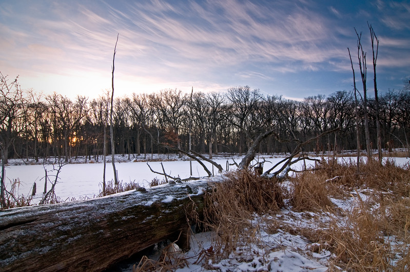 WFG 033<br /> <br /> The winter shoreline of 91st Street Marsh at Waterfall Glen Forest Preserve, DuPage County, Illinois.