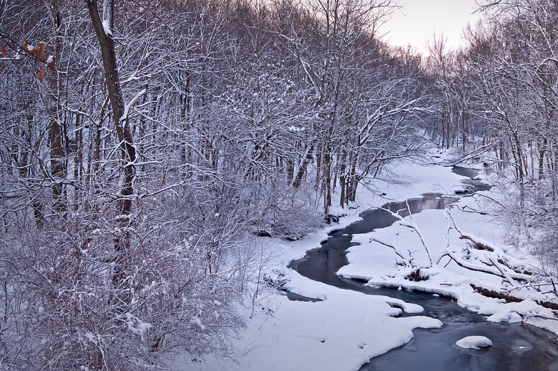 WFG 038<br /> <br /> Sawmill Creek in winter.  Waterfall Glen Forest Preserve, DuPage County, Illinois.