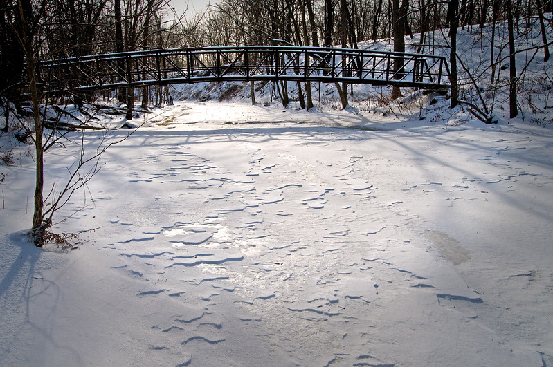 WFG 016<br /> <br /> A footbridge spans frozen Sawmill Creek at Waterfall Glen Forest Preserve, DuPage County, Illinois.