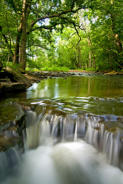 WFG 029<br /> <br /> Sawmill Creek flows peacefully through Waterfall Glen Forest Preserve, DuPage County, Illinois.