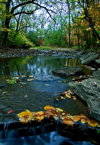 WFG 063<br /> <br /> Autumn on Sawmill Creek.  Waterfall Glen Forest Preserve, DuPage County, Illinois.