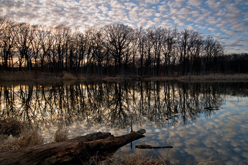 WFG 043<br /> <br /> Sunset over 91st Street Marsh in early spring.  Waterfall Glen Forest Preserve, DuPage County, Illinois.