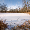WFG 032<br /> <br /> Animal tracks across the frozen surface of 91st Street Marsh.  Waterfall Glen Forest Preserve, DuPage County, Illinois.
