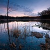 WFG 017<br /> <br /> Dusk at 91st Street Marsh.  Waterfall Glen Forest Preserve, DuPage County, Illinois.