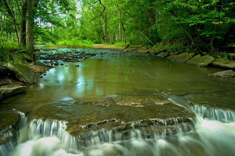 WFG 028<br /> <br /> Sawmill Creek flows peacefully through Waterfall Glen Forest Preserve, DuPage County, Illinois.