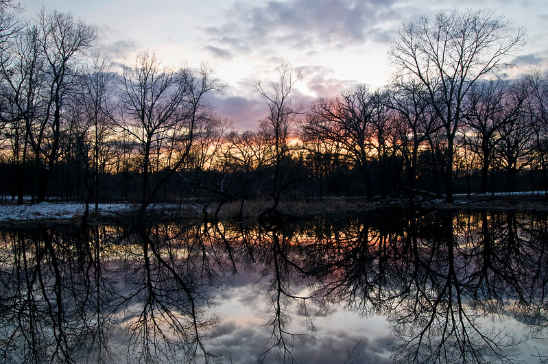 WFG 027<br /> <br /> Winter reflections at 91st Street Marsh.  Waterfall Glen Forest Preserve, DuPage County, Illinois.