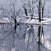 WFG 020<br /> <br /> Winter reflections at 91st Street Marsh.  Waterfall Glen Forest Preserve, DuPage County, Illinois.
