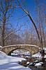 BP 014                        A stone bridge spans a creek flowing through Black Partridge Woods Nature Preserve, Cook County, IL.