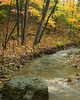 BP 017<br /> <br /> Black Partridge Creek flows peacefully through a landscape of autumn colors at Black Partridge Nature Preserve, Cook County, Illinois.