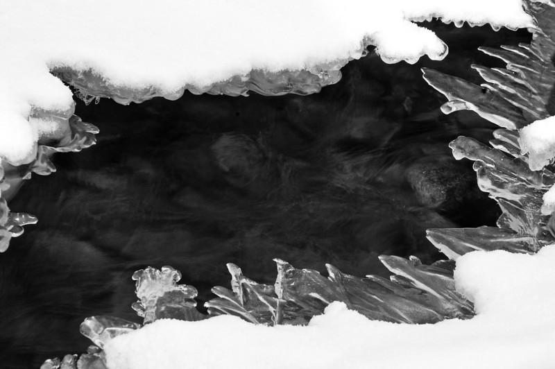 BP 006                           Detail of a frozen creek flowing through Black Partridge Woods Nature Preserve, Cook County, IL.