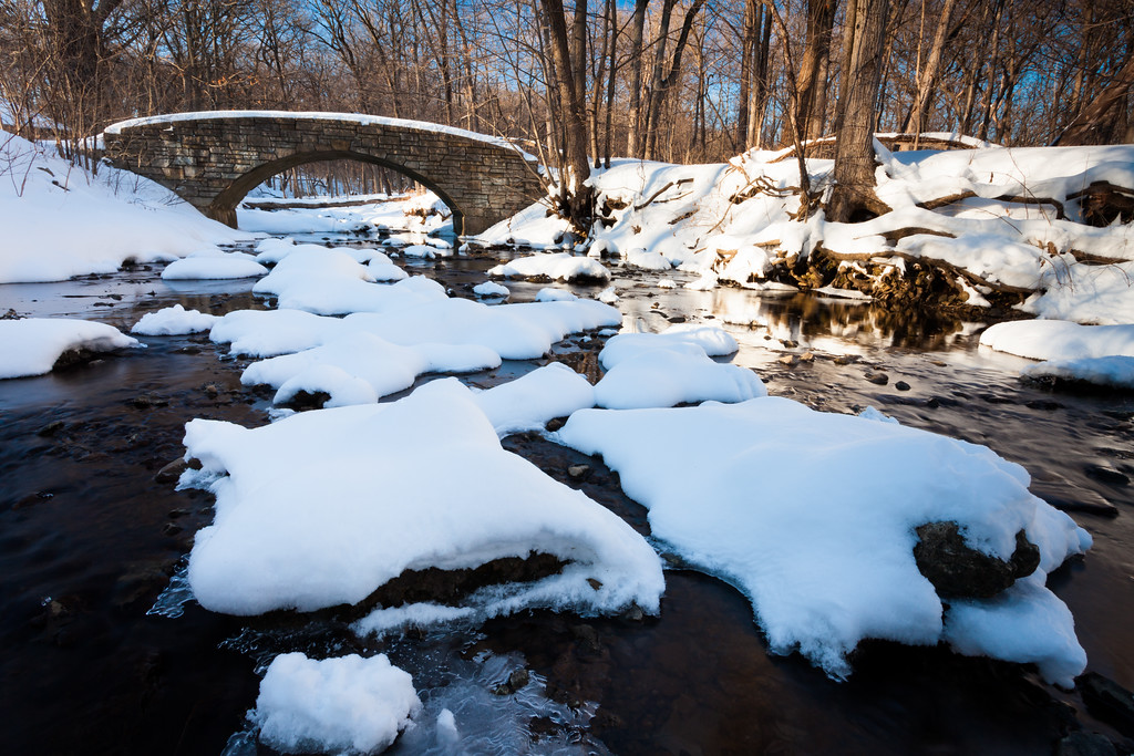 Black Partridge Creek Winter Scene