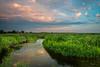 Summer sunset at Springbrook Prairie. Naperville, IL<br /> <br /> IL-120729-0031
