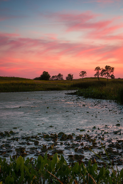 Sunset along the banks of the Crooked Slough. Naperville, IL<br /> <br /> IL-120914-0032