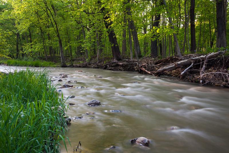 Sawmill Creek spring scene. Darien, IL<br /> <br /> IL-090514-0011