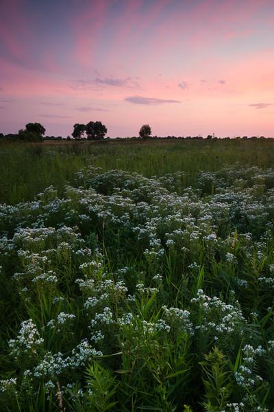 Last Light on the Prairie