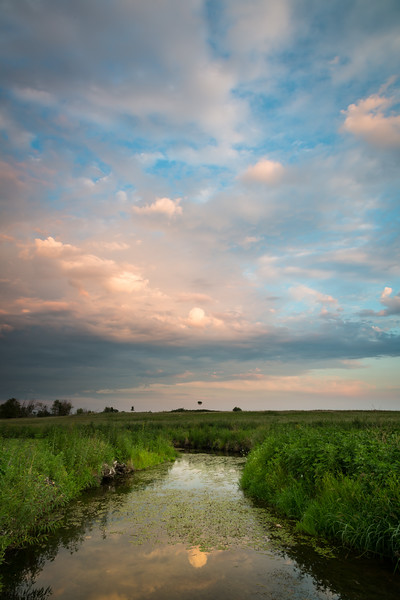 Summer sunset at Springbrook Prairie. Naperville, IL<br /> <br /> IL-120729-0026