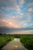 Summer sunset at Springbrook Prairie. Naperville, IL<br /> <br /> IL-120729-0026