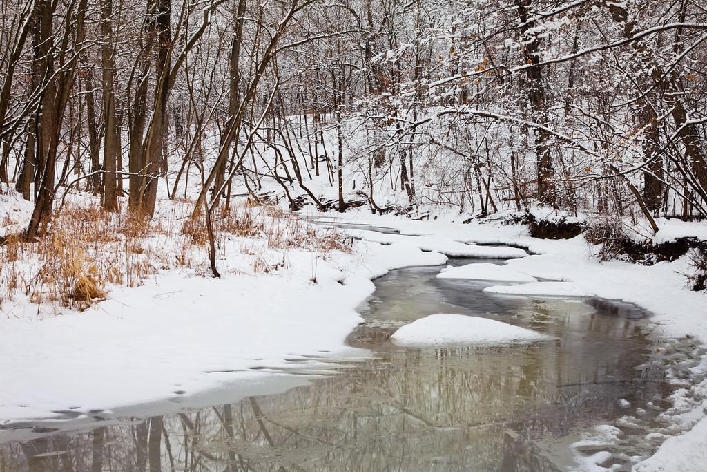 Sawmill Creek spring scene. Darien, IL<br /> <br /> IL-100222-0047