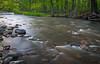 Sawmill Creek spring scene. Darien, IL<br /> <br /> IL-090514-0017