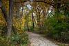 Herric Lake Trail