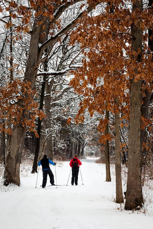 Cross-country skiers enjoying the winter season. Darien, IL<br /> <br /> IL-100222-0029