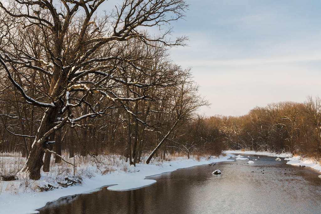 DuPage River Winter