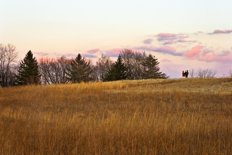 A family enjoys the early spring weather in Springbrook Prairie. Naperville, IL<br /> <br /> IL-080323-0057