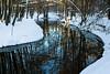 Springbrook Creek Snow