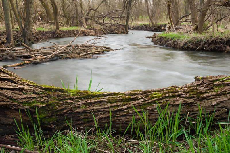Springbrook Creek winds its way through a wooded area near 83rd Street. Naperville, IL<br /> <br /> IL-070413-0013