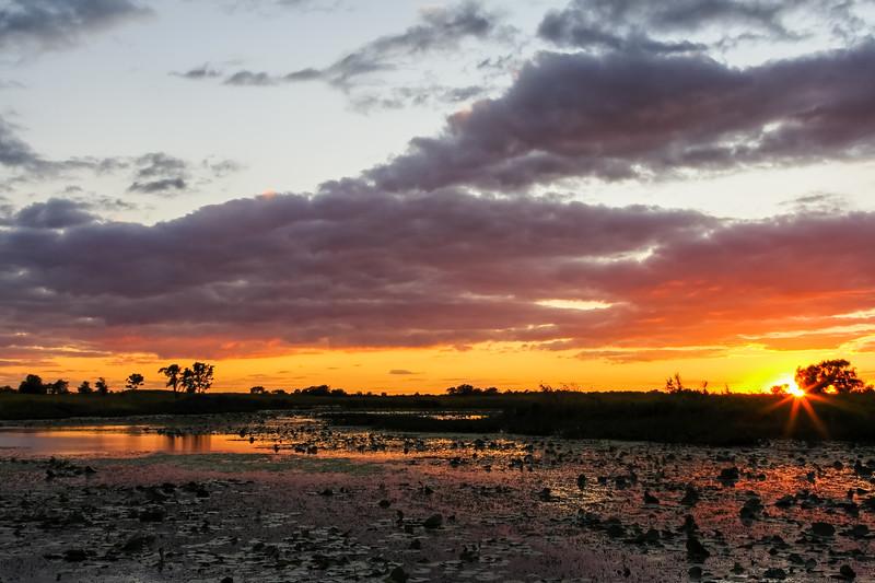 Summer sunset at Springbrook Prairie. Naperville, IL<br /> <br /> IL-070914-00011