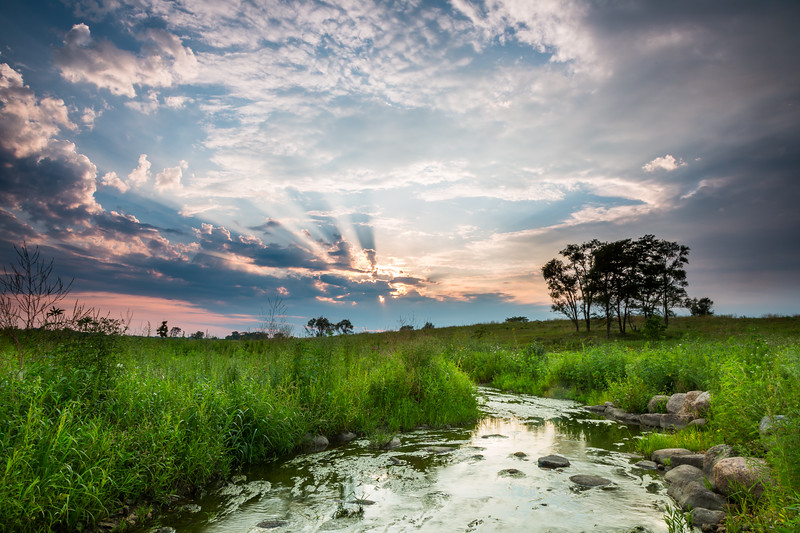 Summer sunset at Springbrook Prairie. Naperville, IL<br /> <br /> IL-120729-0005